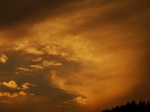 Natural Sepia sunset